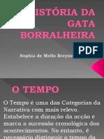 Historia Gataborralheira