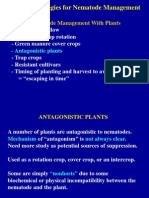 Antagonistic Plants for Nematode Management