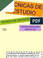 TECNICAS_DE_ESTUDIODennys