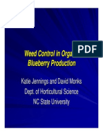 Weed Control in Organic Blueberry Gardening