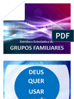 Grupos Familiares, Panoramica Geral