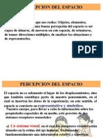 PERCEPCION ESPACIAL