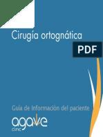 Orthognathic Cirugia maxilar