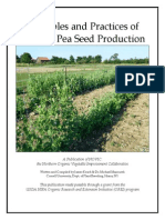 Practices of Organic Pea Seed Gardening