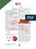 EAD-Enfermagem a Distância-Material do curso[Emergência em Nefrologia]