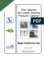 Programa Maestro Calamar BCS
