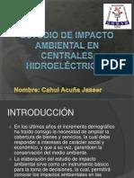 Trabajo de Centrales 2 - Estudio Impacto Ambiental en Ch
