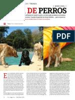 Vida de perros (Cielos Argentinos. Abril 2013)
