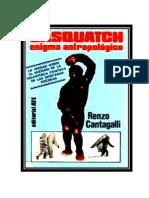 Sasquatch Enigma Antropológico