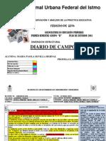 Diario de campo MAIDA Oficial cx.docx