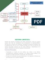 Sistema Linfatico Maria Alejandra Rodriguez !