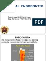 145320007 Material Endodontik