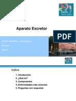 Clase-Presentación Aparato Excretor