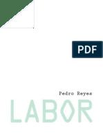 Carpeta Pedro Reyes