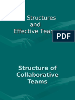 Structure and Effective Teams 19th Generation Sept.
