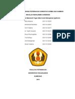 Manajemen Agribisinis Makalah Praktikum