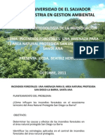 Presentacion Articulo Incendios Forestales Anp Sdlb, Metapan