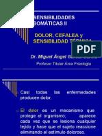 CORTEZA SENSORIAL, SENSACIONES SOMÁTICAS II, DOLOR.pdf