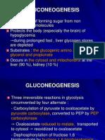 Carbohydrate Metabolism 3-Glukoneogenesis