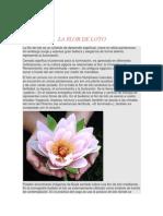 LA FLOR DE LOTO.docx