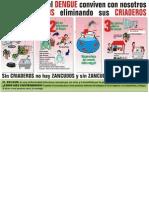 Afiche Dengue