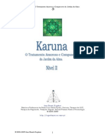 Manual Karuna II