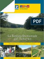 La Foresta Demaniale Del Taburno