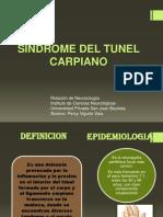 S. Tunel Carpiano
