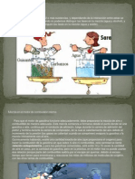 Exposicion Diagrama de Mezclas