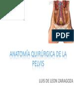 ANATOMíA QUIRÚRGICA DE LA PELVIS