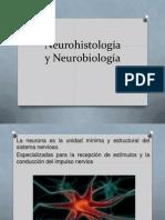 Neurohistología