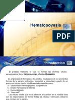09.-_Hematopoyesis (1)