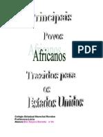 Historia Dos Africanos