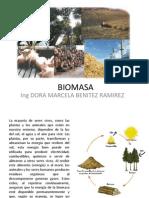 BIOMASA Biocombustibles PDF Febrero 201310