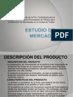 Estudio de Mercado Expo