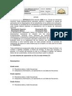 Acta Superacion de Logros