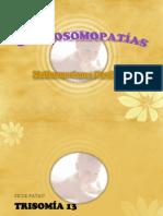 CROMOSOMO..