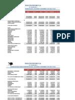 Estado de Resultados Halcon Negro 2012 - 2011-1