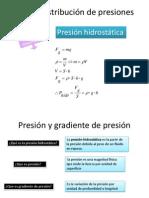 1.2.2Distribución de presiones