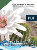 Cartilha Maria Da Penha Epm