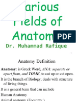 Different Feilds of Anatomy