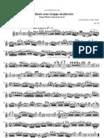 Stamitz Flute Concerto in g Andante Non Troppo Moderato