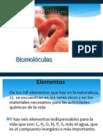 3 biomoleculas 2013