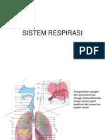 3 Sistem Respirasi