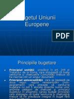 Curs 11.Bugetul UE Si Piata Muncii