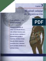 Capítulo III El nivel celular de organización