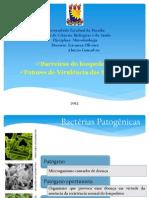 Microbiota  e Fatores de virulência