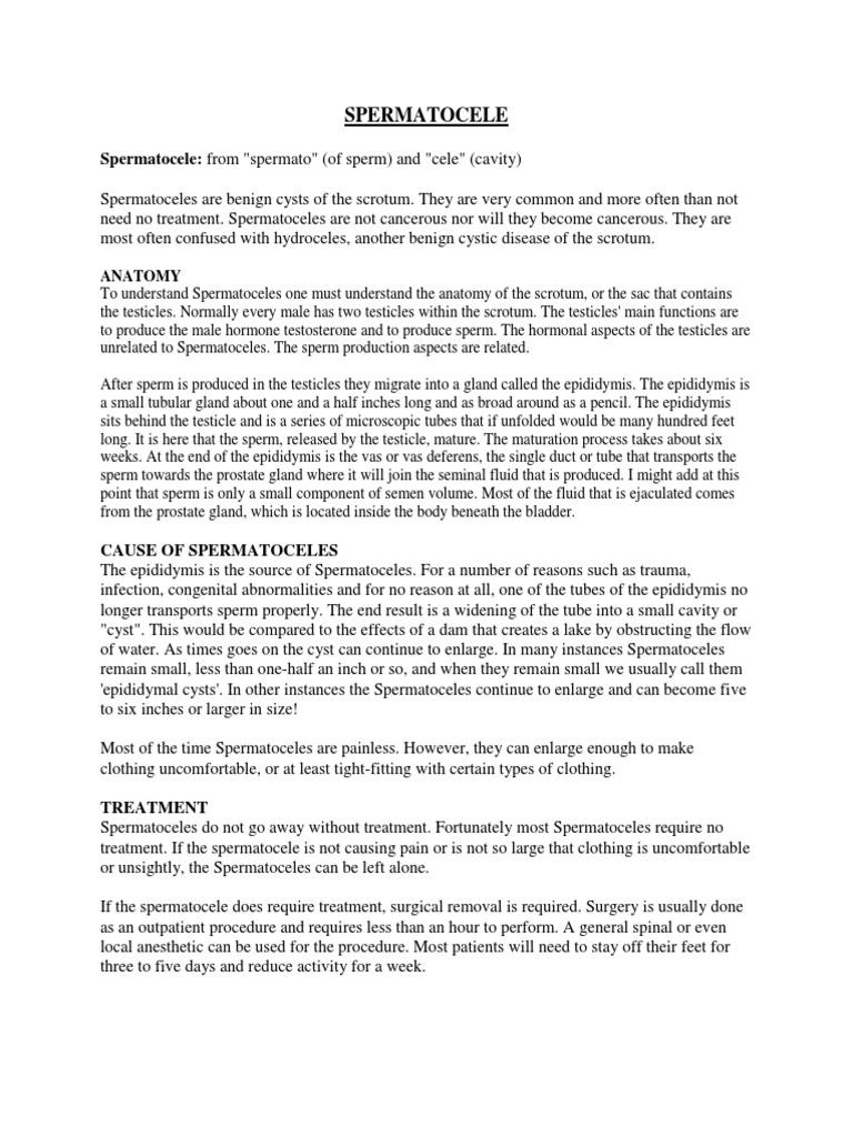 spermatocele | Testículo | Cirugía