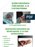 97730237 Adaptacion Fisiologica Del Rn