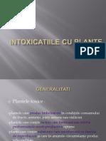 Pl Tox c II- Intoxicatiile Cu Plante